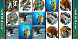Der Spielautomat Alaskan Fishing im Betway Casino