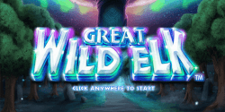 Der Spielautomat Great Wild Elk im LeoVegas Casino