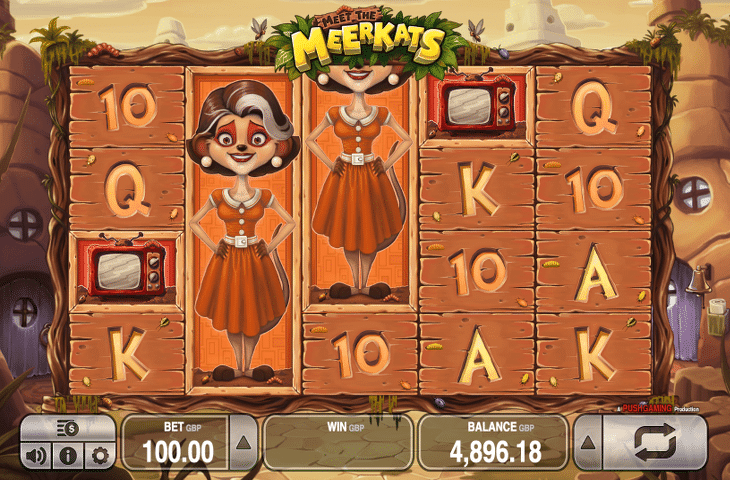 Meet_the_Merkats_Spielautomat_Push_Gaming