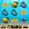 Der Spielautomat Golden Fish Tank im Mr Green Casino